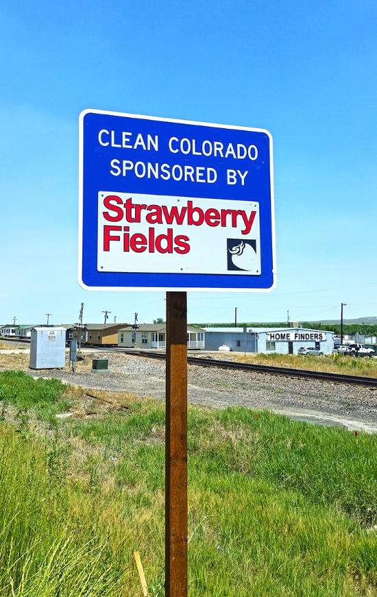 Strawberry Fields - COR025N104-1.jpg