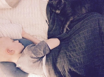 Sleeping Louie and levi.jpg