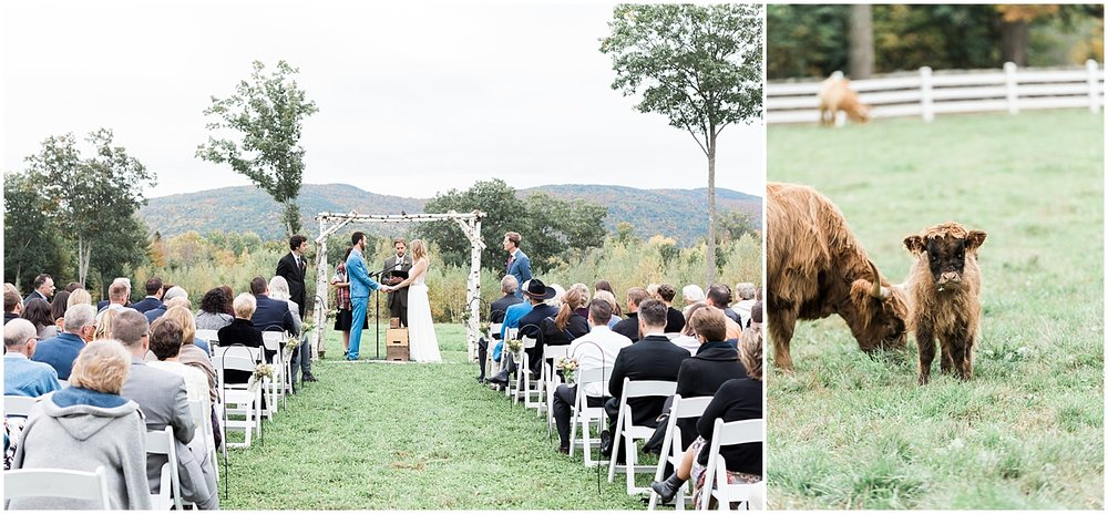 Ceremony looking over mountains and field of cows by Alyssa Parker Photography