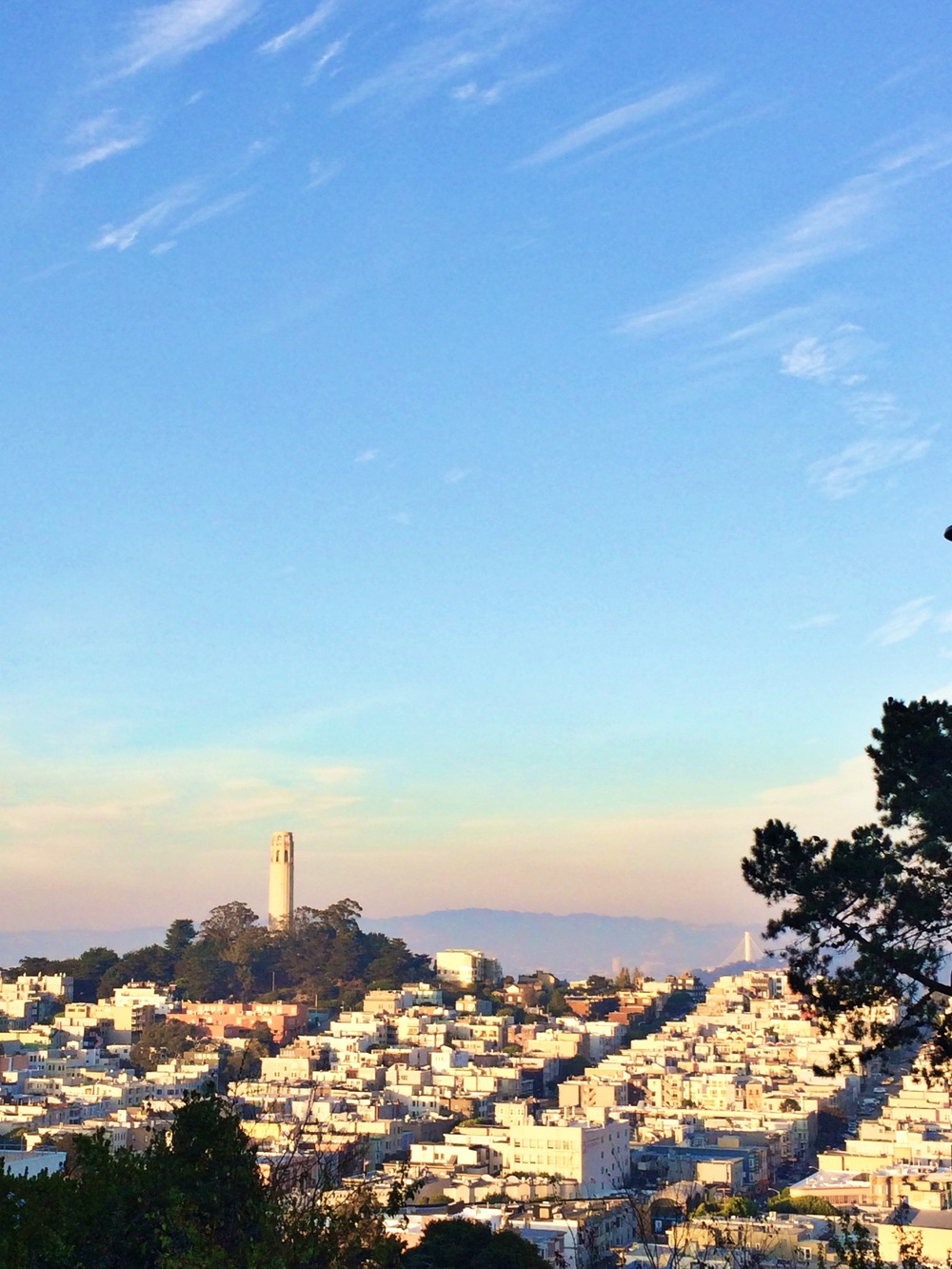 Coit Tower at Magic Hour