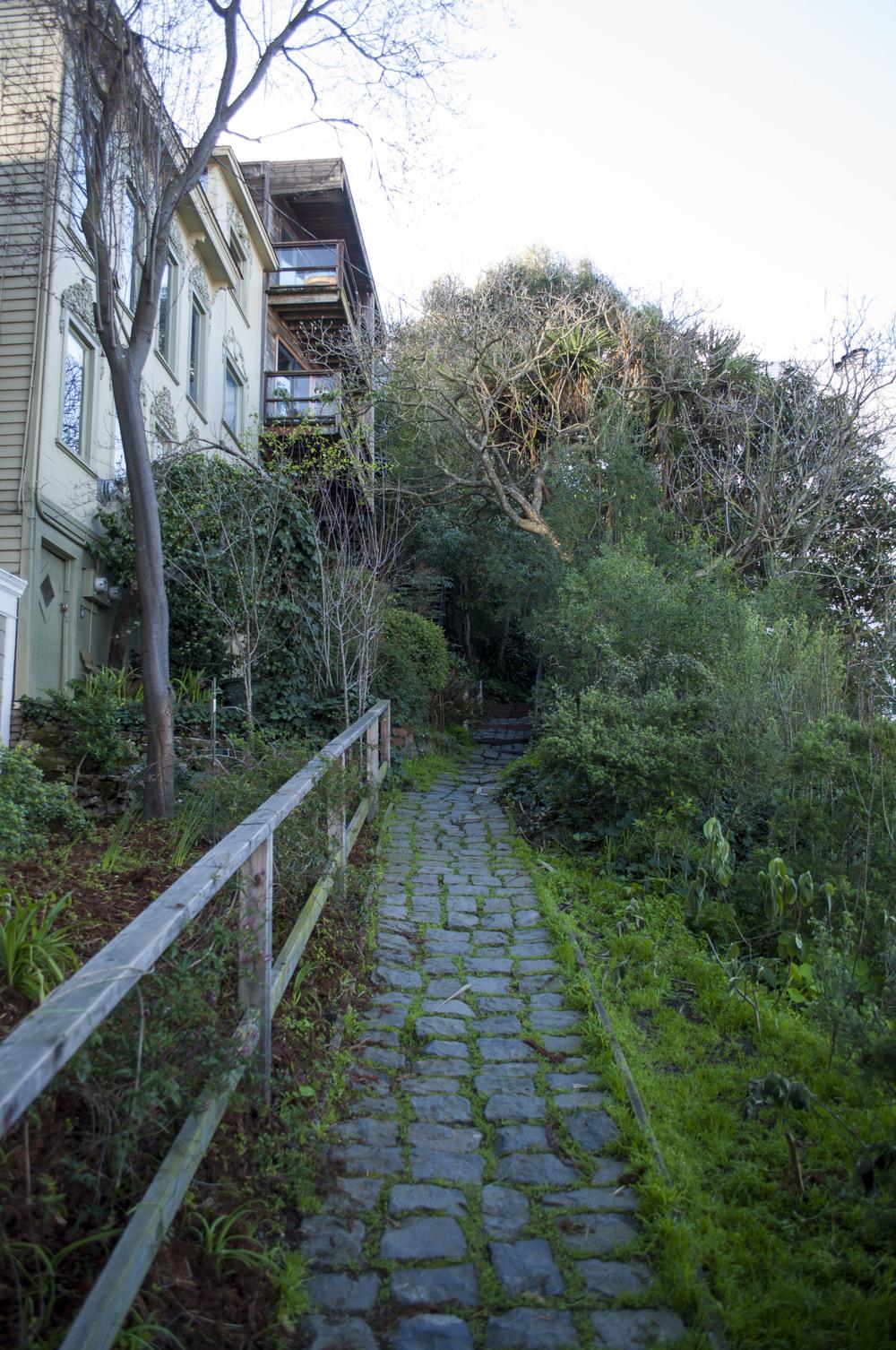 Barbary Lane