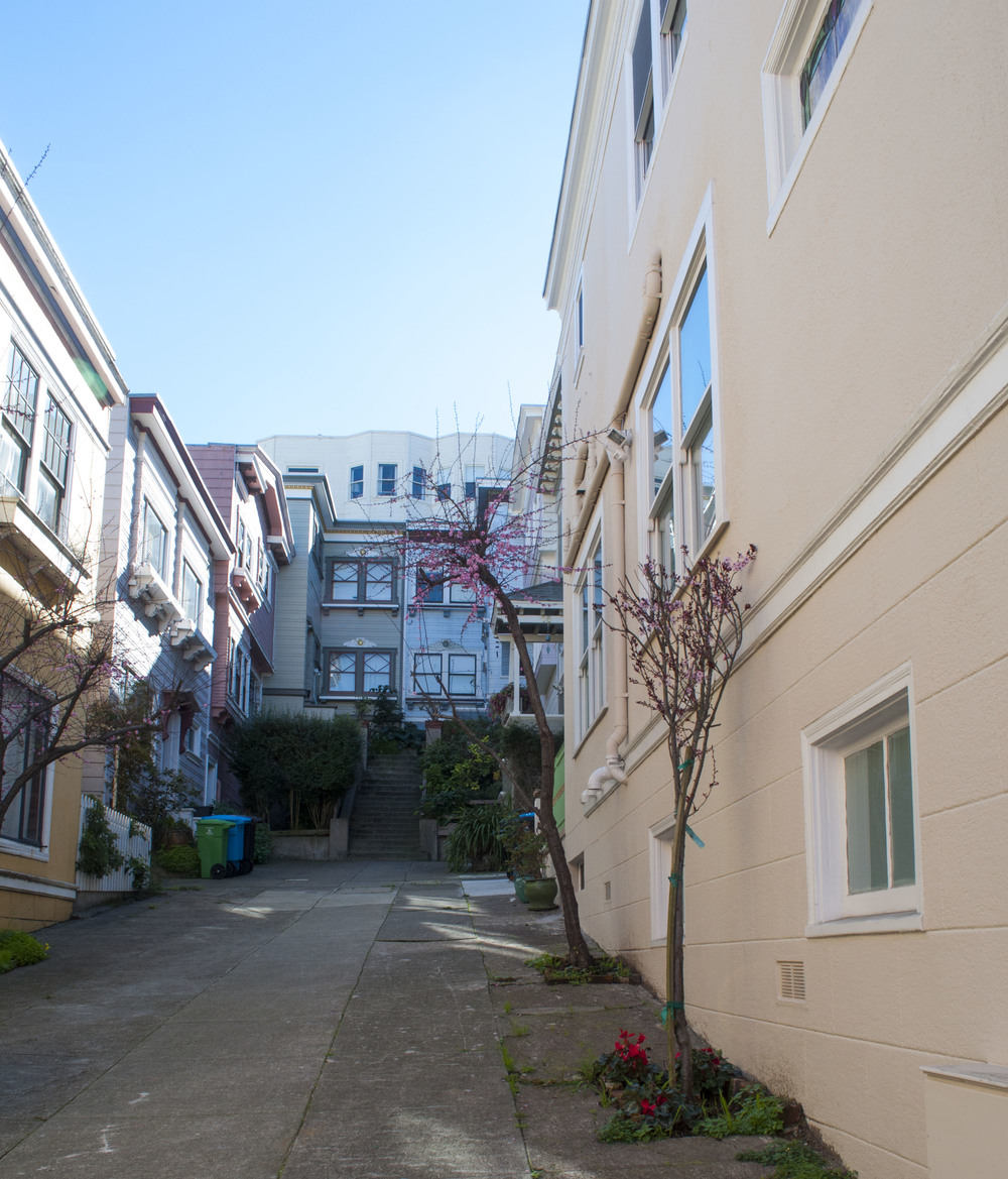 Russian Hill wanderings