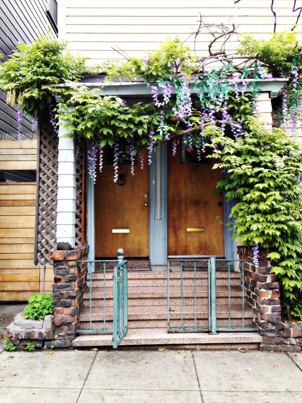 pretty wisteria house sf