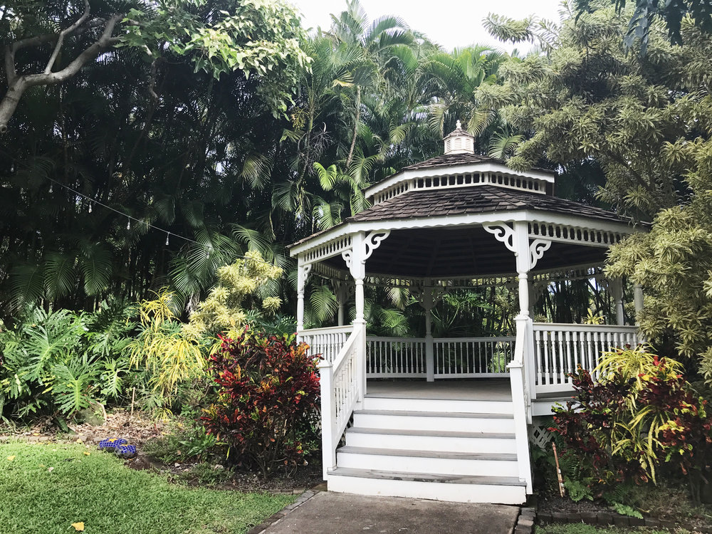 tropical gazebo dreamy vibes