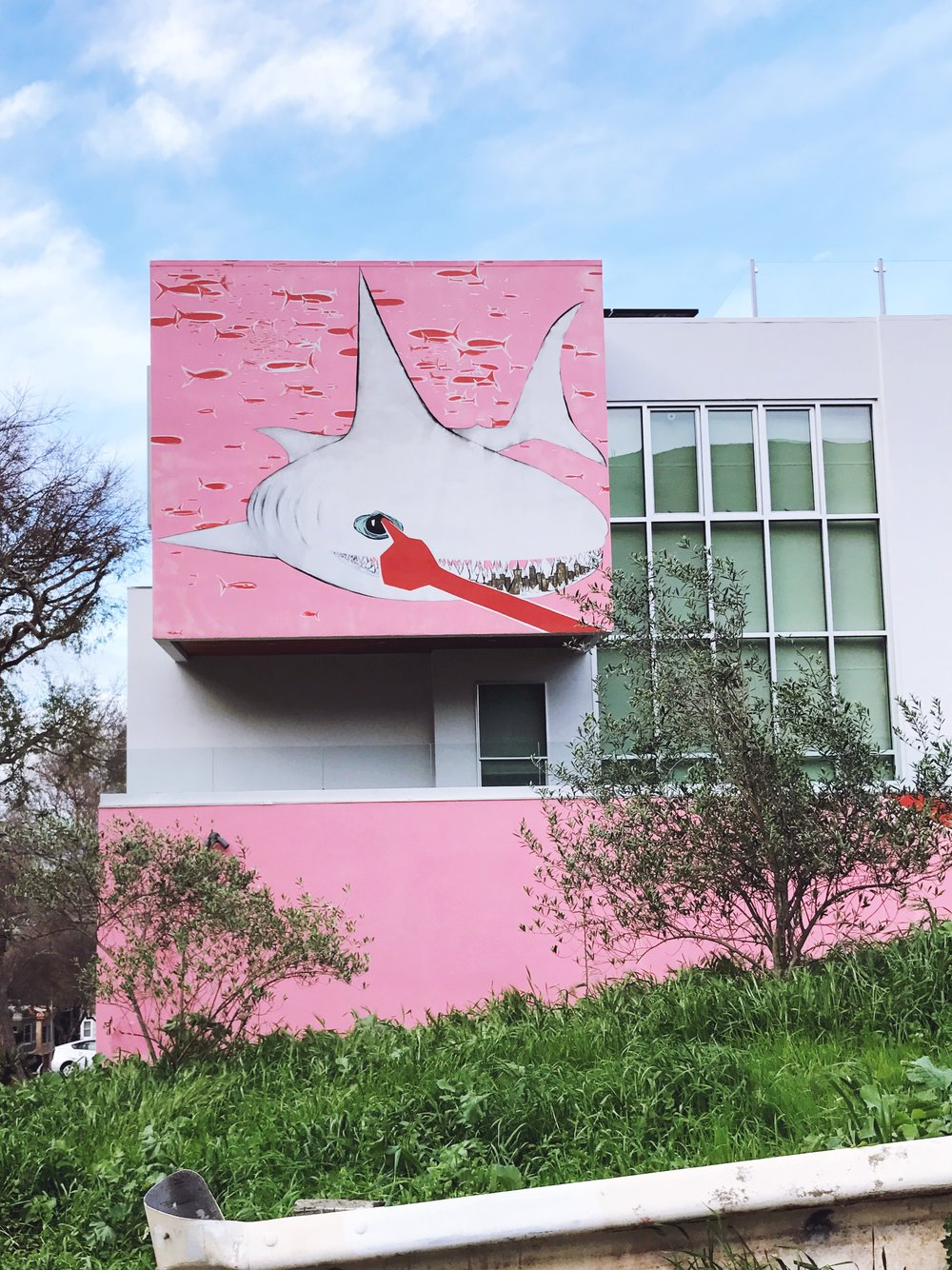 san francisco pink shark house