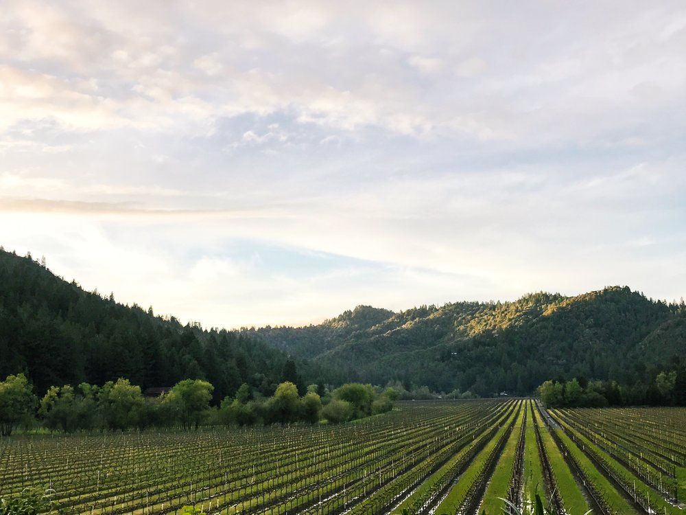 sonoma county wine weekend getaway