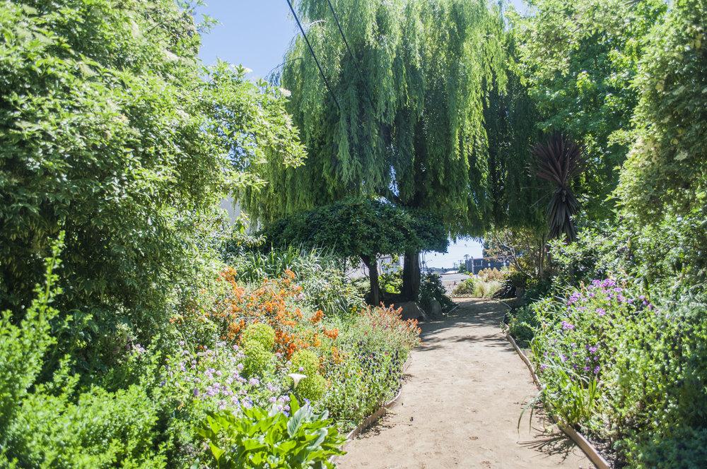 dogpatch sf garden