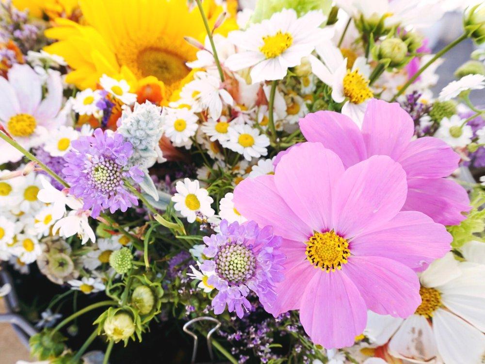 farmer's market flower finds
