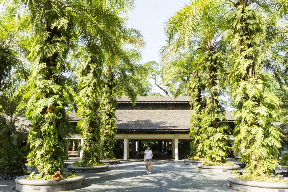 singapore botanic gardens things to do