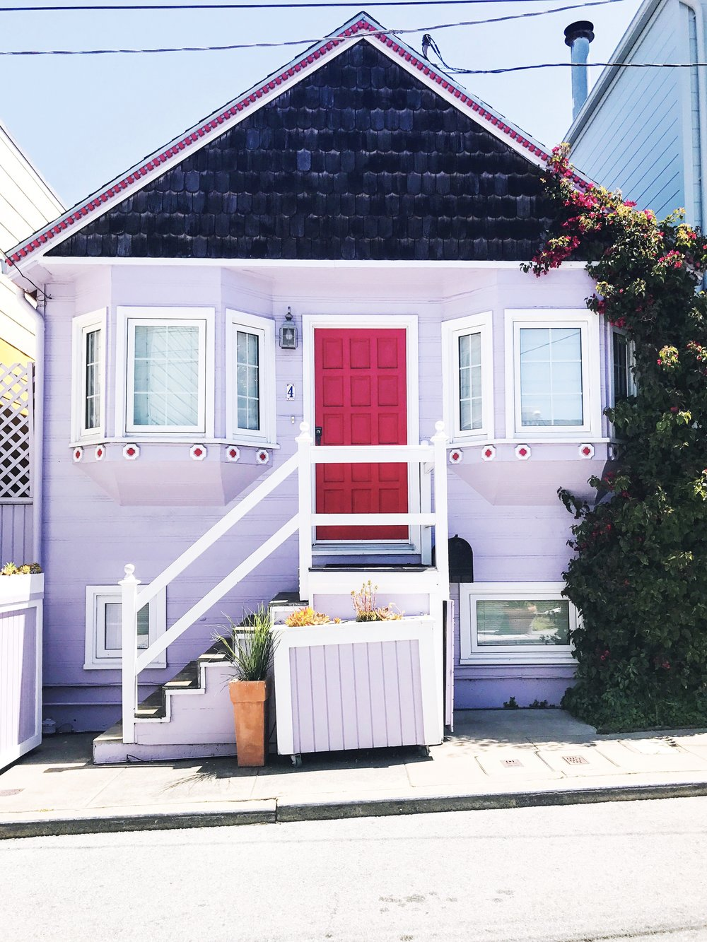 pink house san francisco goals