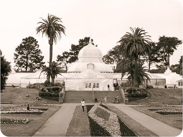 San Francisco Conservatory of Flowers, 2009