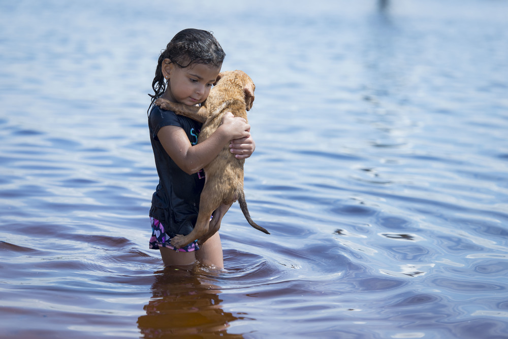 Ava-Marie Reider, 3, from Davenport holds Tampa resident Sarah Taylor's pup Rhia at Davis Island Dog Beach on Wednesday, Aug. 26, which was National Dog Day.