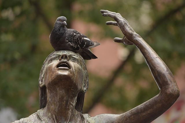 A pigeon rests on a statue in downtown Boston.