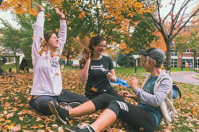 Autumn at Northeastern University. #autumn #fall #leaves