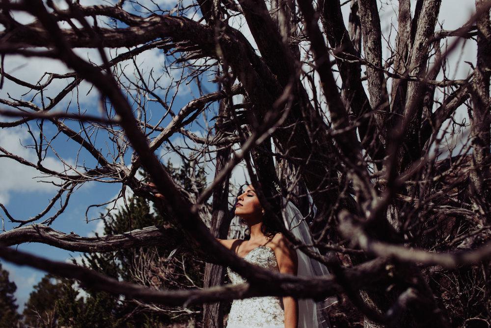 Sesion_trash_the_dress_en_las_cascadas-16.jpg