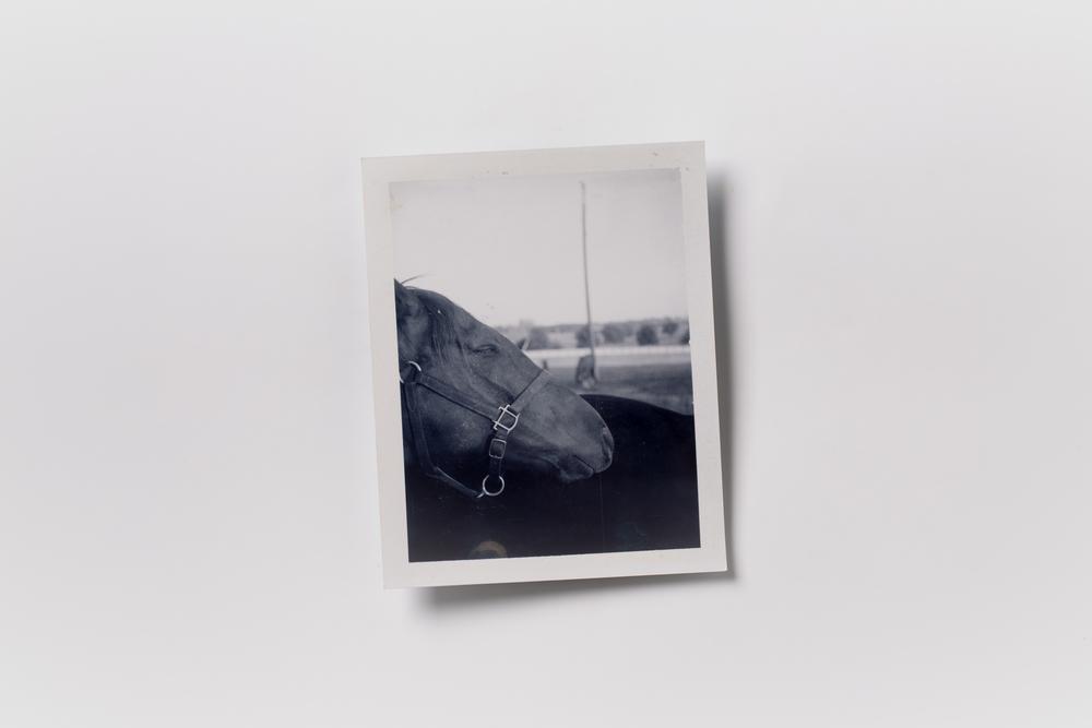 website polaroid (2 of 15).jpg