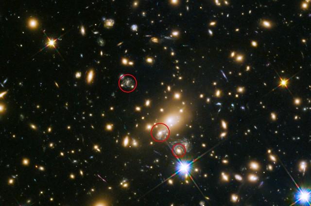 Refsdal Supernova. El círculo en medio muestra la posición de la reaparición de la Supernova en 2016. Foto: NASA/ESA/HST
