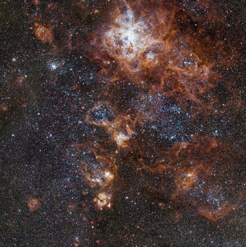 A unos 160.000 años luz de distancia, la nebulosa de la Tarántula es el objeto más destacado de la Gran Nube de Magallanes, una galaxia satélite de nuestra Vía Láctea. Crédito: ESO