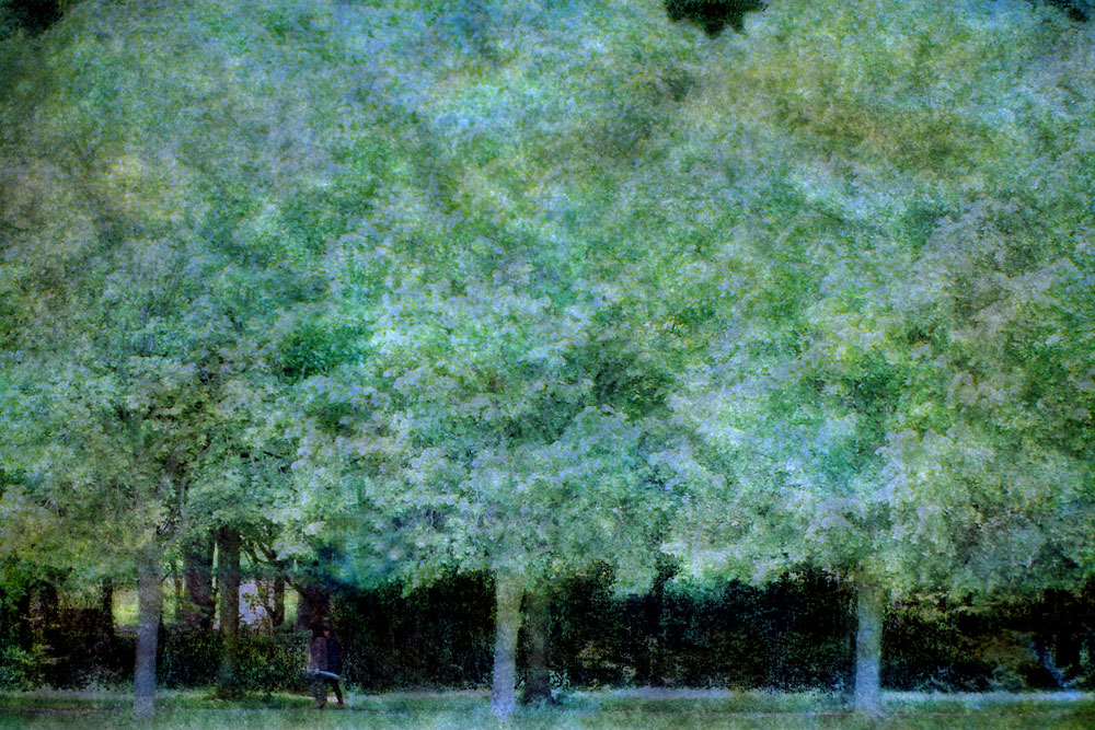 """Park,"" alternative process photo, 34 X 51 in., © 2017 Bill Travis"