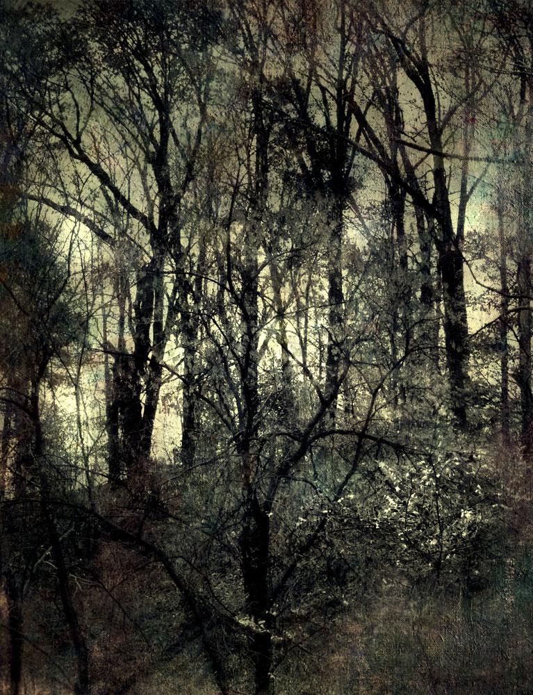 """Silhouette,"" alternative process photo, 30 X 23 in., © 2018 Bill Travis"