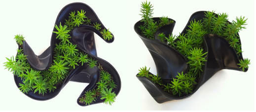 If you are searching for a creative and truly unique gift for the holidays, you need look no further. Joe Rockwell makes charming miniature succulent gardens - with melted vinyl records as the pot! They are whimsically shaped, with beautiful curves. If you wish to see more, check out this feature written about his work (includes lots of pictures!):http://thelemongrove.blogspot.com/2012/05/joes-vinyl-succulent-gardens.html. If you like what you see, you can buy one for yourself at the Holiday Artisan Bazaar, taking place this Saturday at 209 Anacapa Street from 10am - 7 pm.