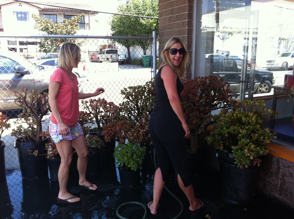 Congratulations !!!!   Kathy Kelly and Jill Jamar have just returned with the most amazing plants, so kindly donated, for our outdoor learning zone :)
