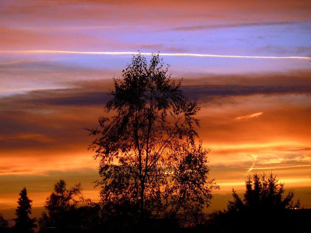 sunset-57007_1920.jpg