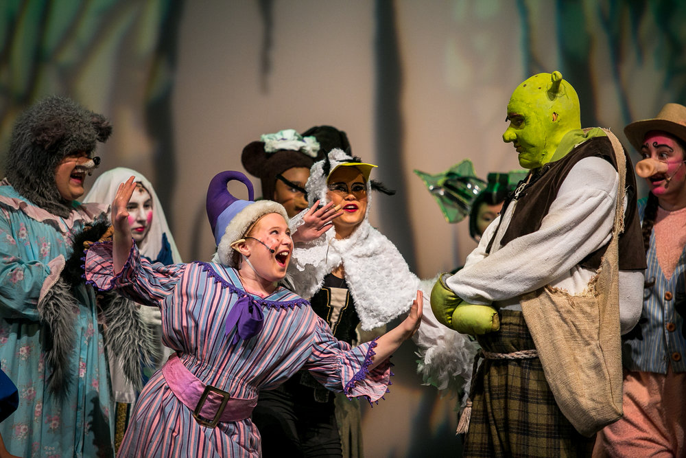 shrek-musical-17.jpg