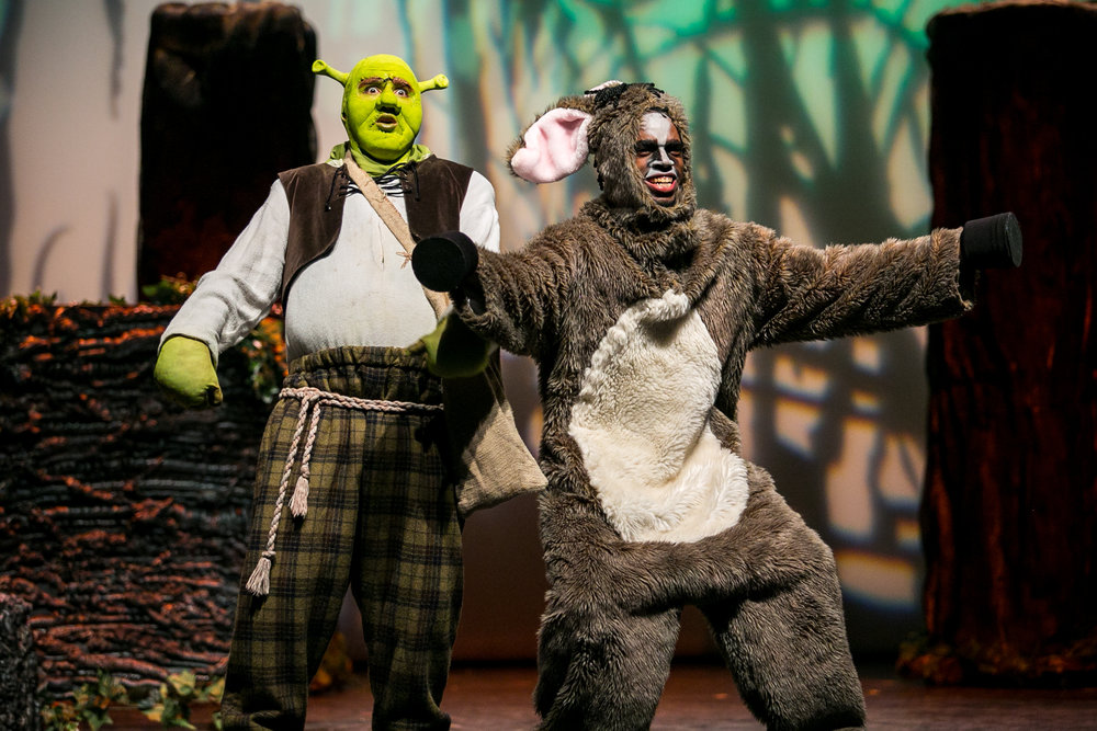 shrek-musical-21.jpg