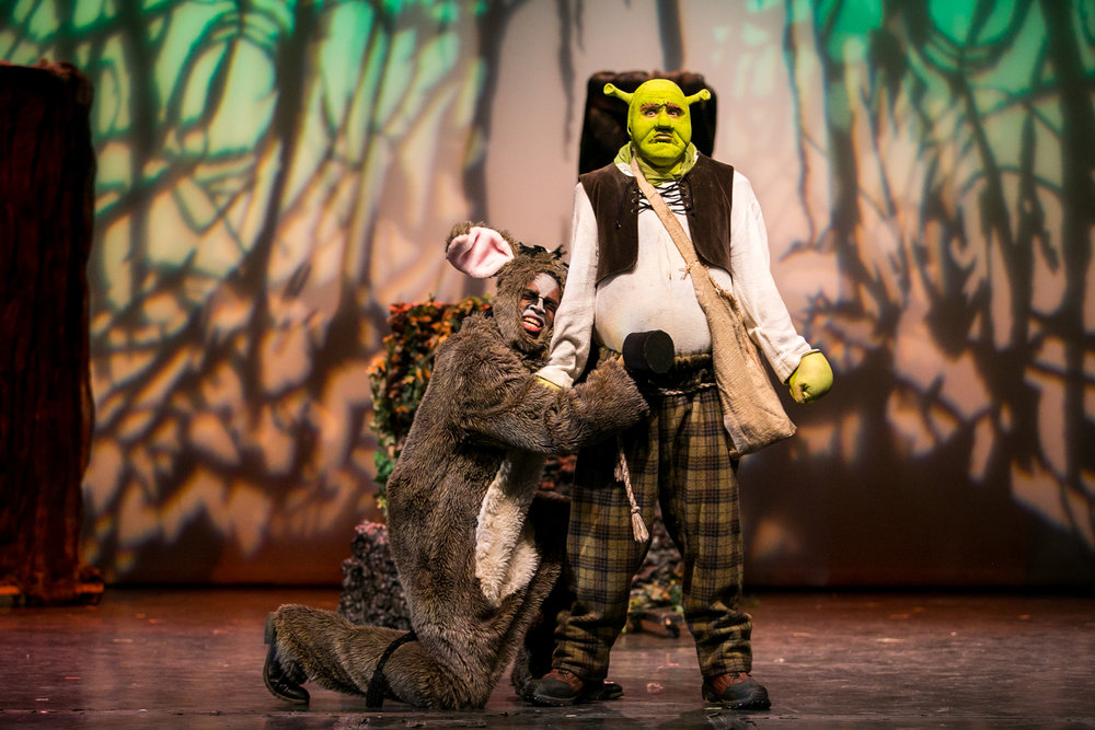 shrek-musical-22.jpg