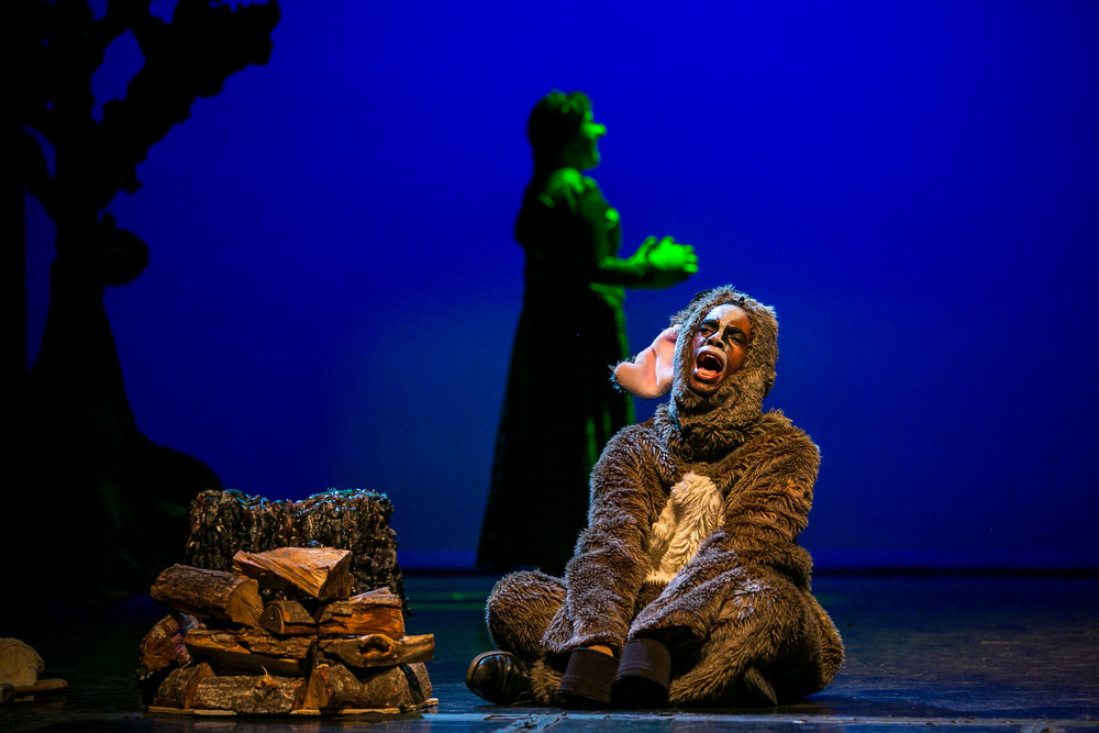 shrek-musical-64.jpg