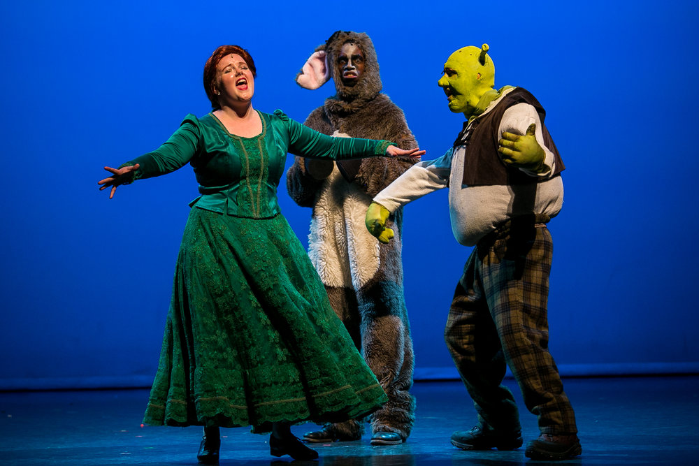 shrek-musical-78.jpg