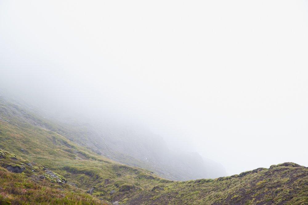 meadow SOS.jpg