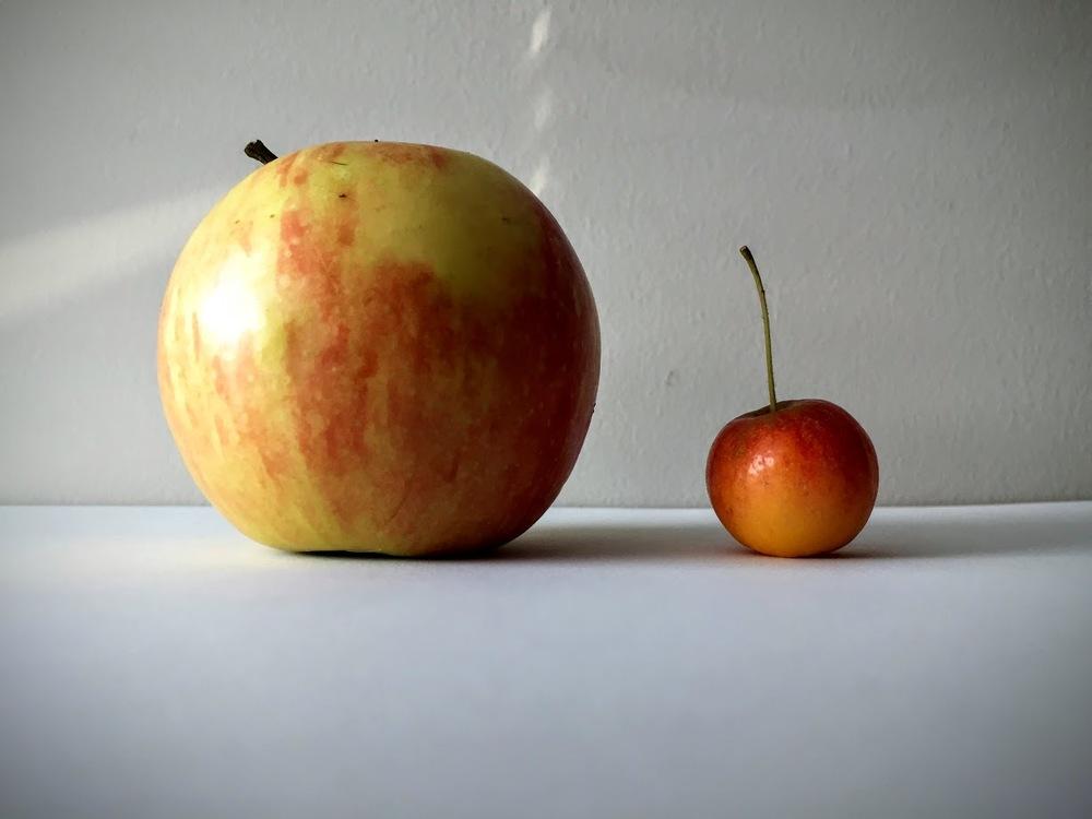Big sister apple, little sister crabapple.