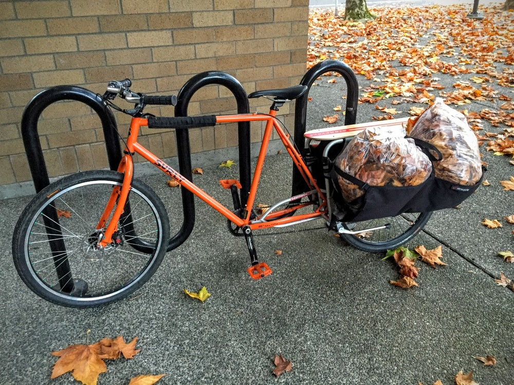 This is the bike of a crazy lady.