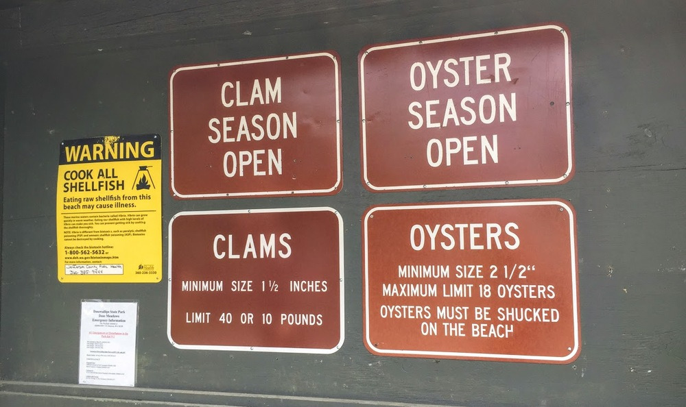 Our goal: 40 clams or 10 pounds.