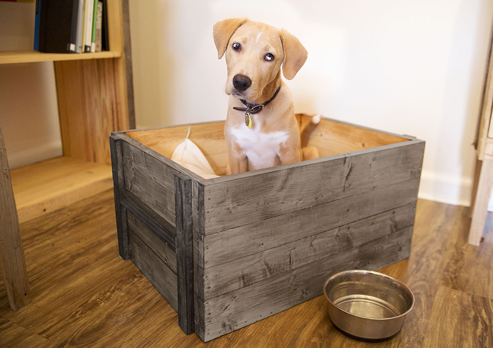 Box crate crates and pallet for Pallet dog crate