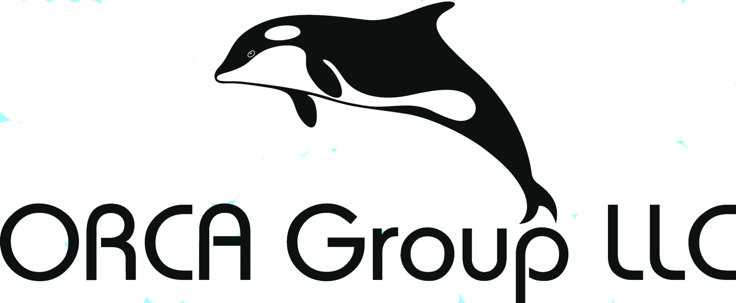 Cyber Security — Orca Group