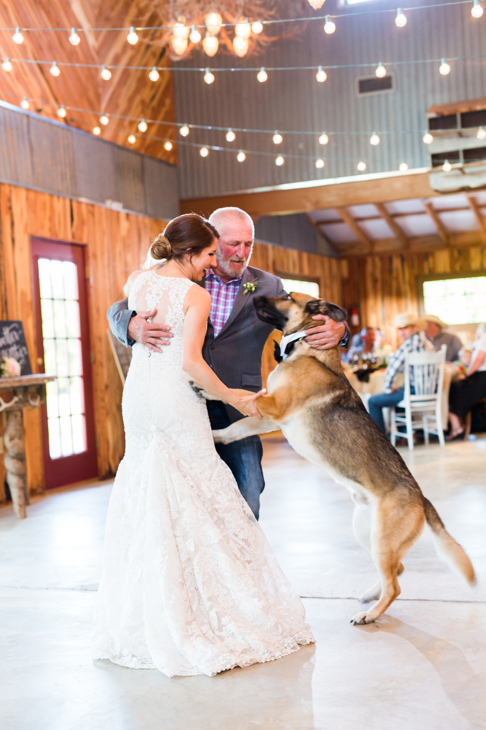 oklahoma wedding photographer pasture at willows ranch broken bow german shepherd first dance