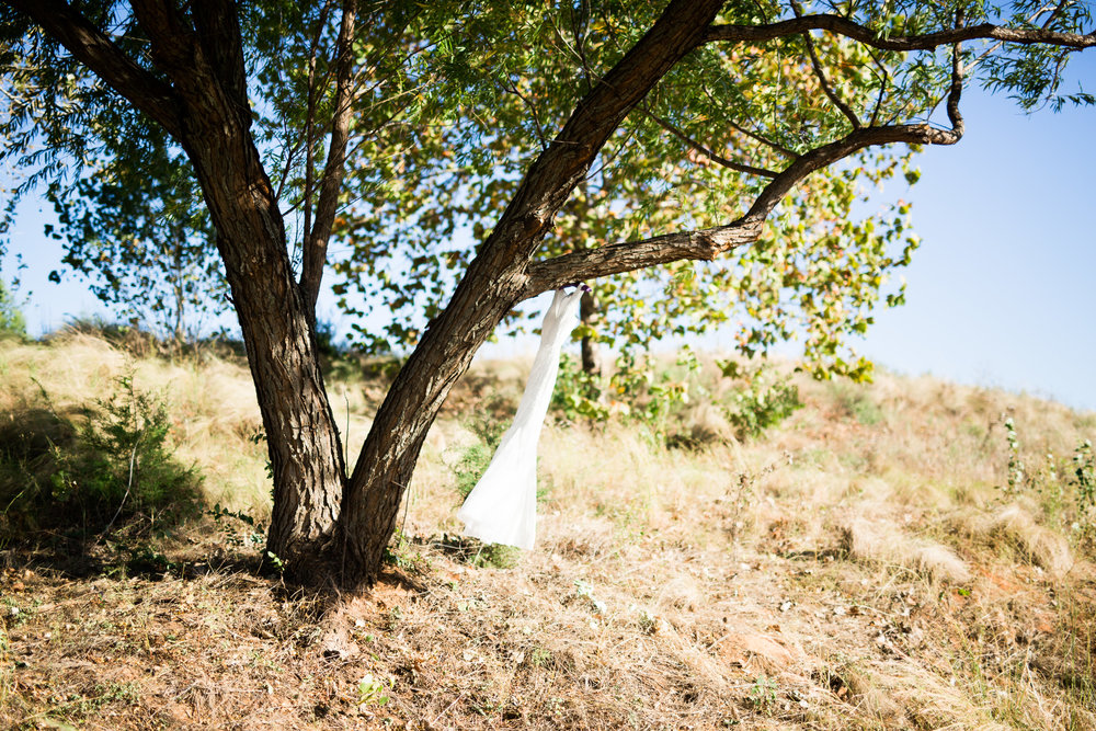 norman backyard wedding okc wedding photographer oklahoma dress in tree