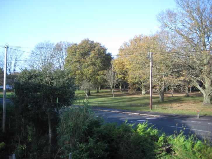 View onto Firgrove Road from the Annexe