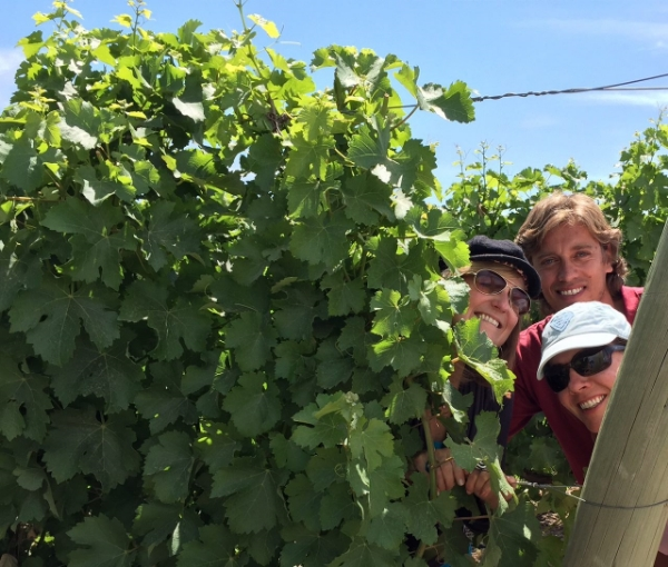 the-team-with-grape-vines.jpg