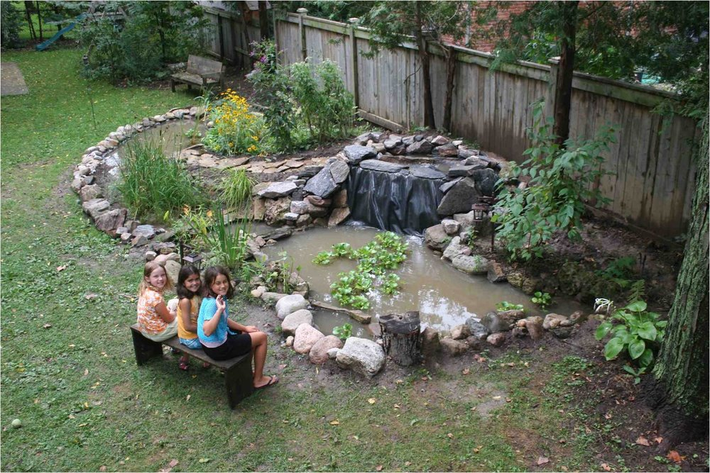 A backyard wetland system (this photo shows final stages before completion) was created in our yard, featuring two ponds (one deep with fish, the other shallow for dragonflies), a main waterfall, a spillway and 'marsh filter' were installed. The wildlife stampeded back filling our lives with lots to watch and many amazing stories to retell.