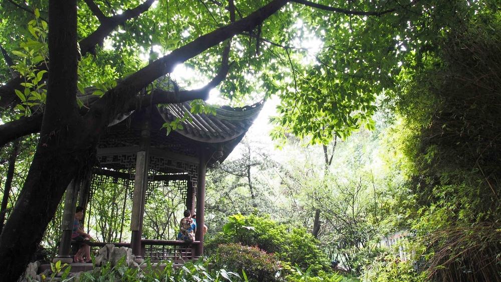 Chengdu Tea Garden