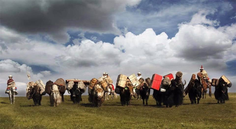 Amdo nomads on the move