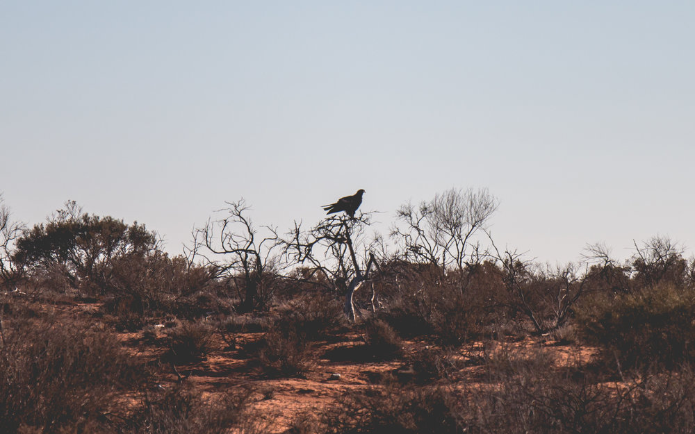 Western Australia, April 2018