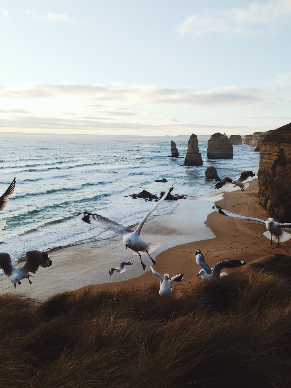@lydiaevangeline - Great Ocean Road, Australia.