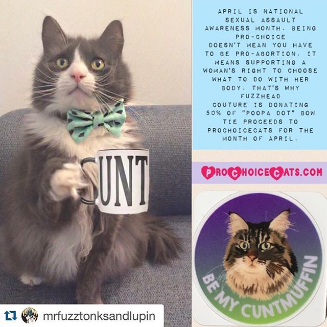 "#Repost @mrfuzztonksandlupin with @repostapp. ・・・ We here at @mrfuzztonksandlupin are super passionate about women's rights. It's not about political allegiance or religious affiliation, it's about what's right.  This month is National Sexual Assault Awareness Month.  Did you know that nearly 1 in 2 women and 1 in 5 men in the US have experienced sexual violence or victimization other than rape at some point in their lifetime according to nsvrc.org?  This month over at FuzzheadCouture.Etsy.com 50% of the proceeds of our ""Oh Shit"" aka Poop polka dot bow tie will be going to @prochoicecats, supporting a Pro-Choice billboard in Ohio and a woman's right to choose what happens to her body. ""Oh Shit"" Bow tie modeled by Hitch above from @chunkyfonzandhitch. Cunt mug sold separately! #saam #prochoice #FuzzheadCouture #bowtie #catsinbowties"