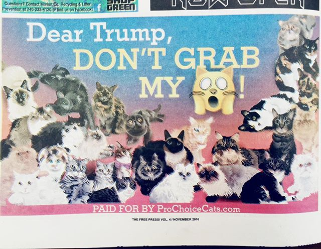 Thanks to generous donors and all of the Instagram cats who participated, our anti-Trump ad appeared in the Columbus Free Press! And we're also putting a billboard up in Toledo, Ohio. The message is spreading all across the state. Thank you to everyone who donated and got involved! #LeaveMyPussyAlone #NeverTrump #PussyGrabsBack #VoteProChoice #ProChoiceCats