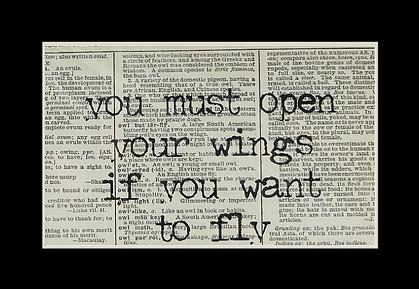 openwings